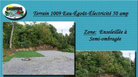 Terrain 1009