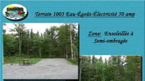Terrain 1003