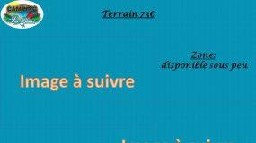 Terrain 736